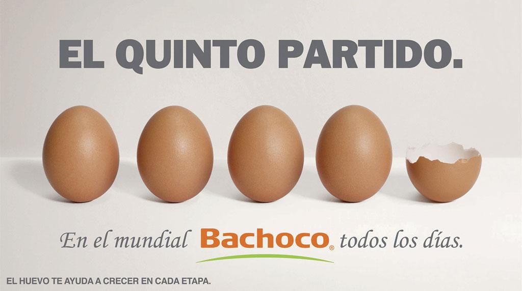 Huevos…En el mundial, Bachoco todos los días