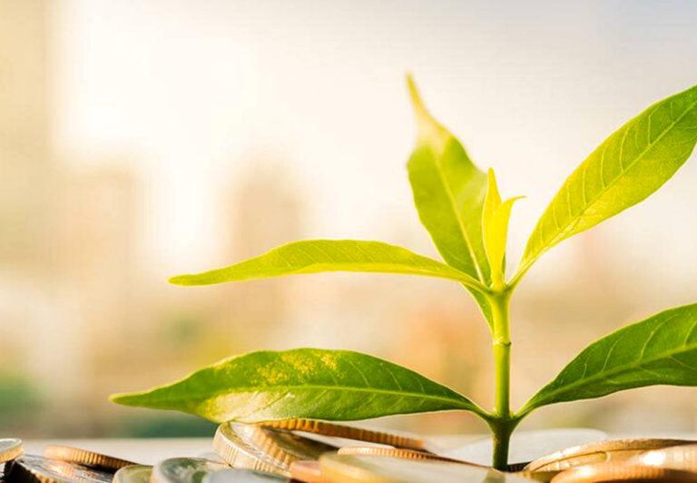 4 pasos para hacer negocios conscientes en la era post-Covid