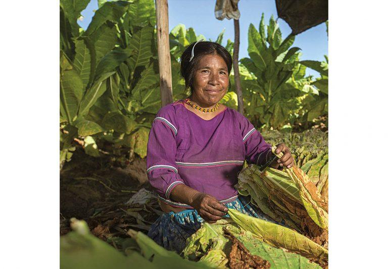 Philip Morris México presentó su 3er Informe de Sustentabilidad.